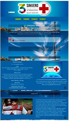 Criação de sites - Serviço de Design Gráfico - Brasília - SINGERD